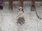 Lavendelfrau