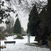 Snow - Chapmans Green