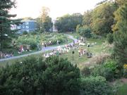 Minton Stable Community Gardens & Dog Park