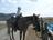 Parent and tot riding