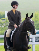 Go and Play Stables: Standardbred Rescue, Rehabilitation, Retraining and Rehoming