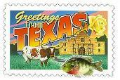 Texas Bluegillars