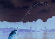 Ultralight Fishing Fun Fishing