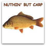 NUTHIN' BUT CARP