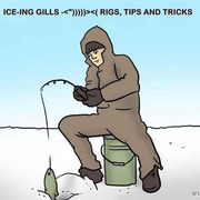 """ICE-ING GILLS -<"""")))))><( RIGS, TIPS AND TRICKS"""