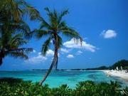 (Delayed) Bahamas Training Center