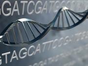 Native American mtDNA Haplogroups A2, B2, C1, D1, and X
