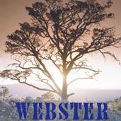Webster Surname