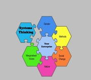 Systems Thinking: prioritizing gender, marginalized voices and ecologies