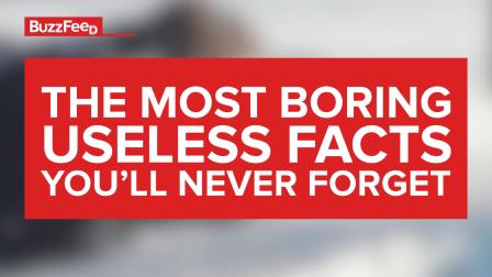 Useless Facts