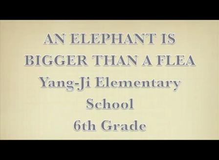 An Elephant is Bigger Than a Flea
