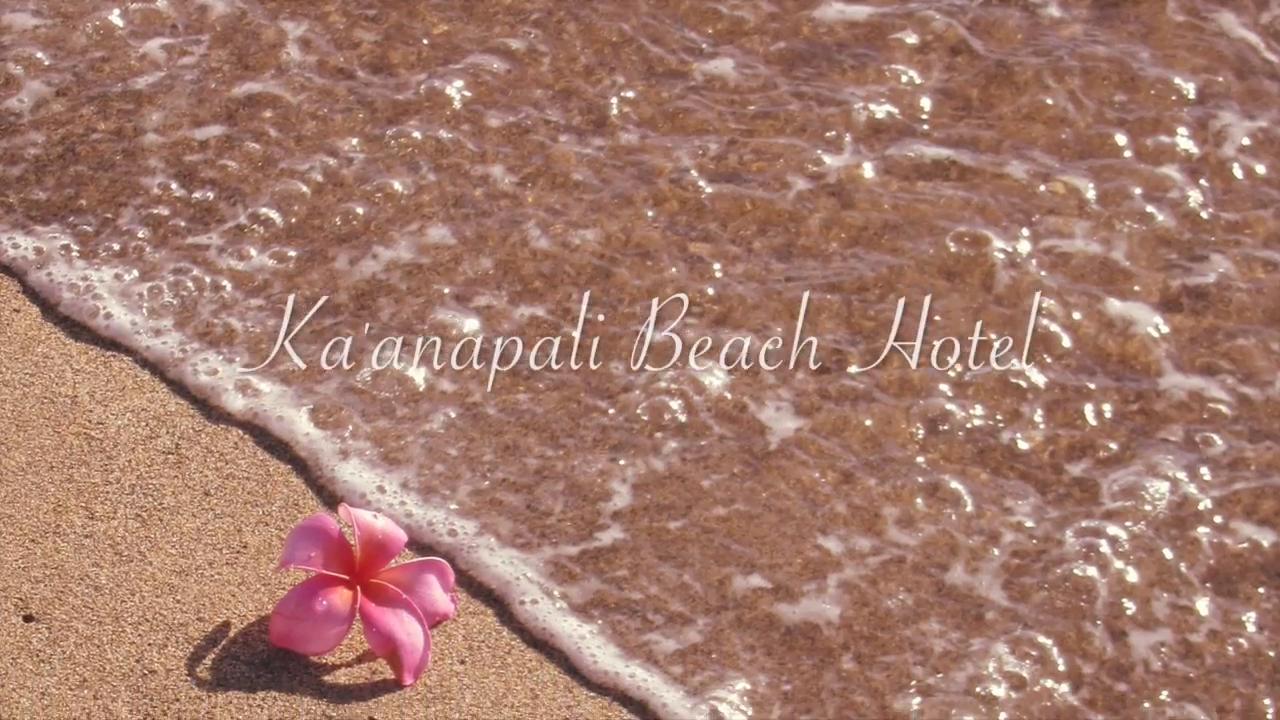 Best Hawaiian Resort