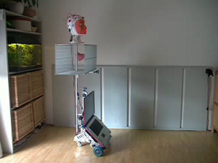Experiments with mobile robots (3)