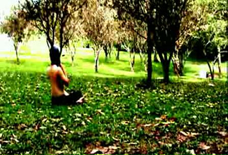 p,p silmar_mpeg1video