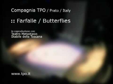 Farfalle / Butterflies