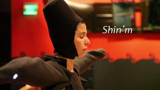 Shin'm: interactive audiovisual performance & installation