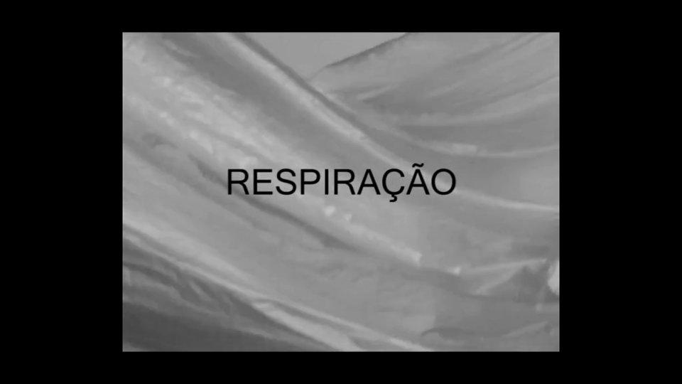 Respiração | 2015 | Rebecca Moradalizadeh & Daniel Pinheiro