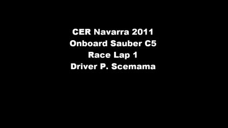 CER Navarra 2011