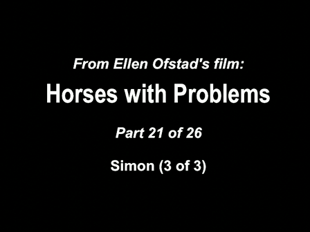 21-26 Horses with Problems - Simon 3-3