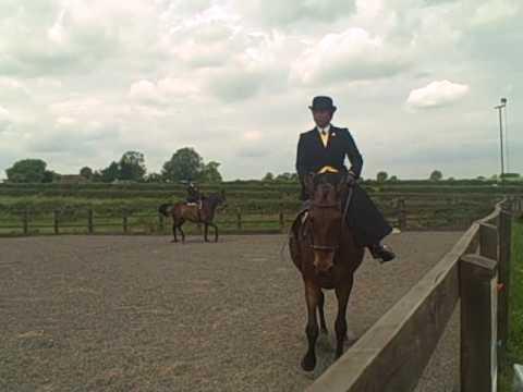 Novice Sidesaddle Equitation Part One - Griffydam 13.06.10