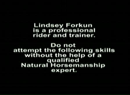 Natural Horsemanship and Lindsey Forkun Equestrian