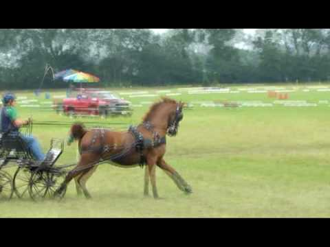 Singsation - Iron Horse 2010 - Marathon