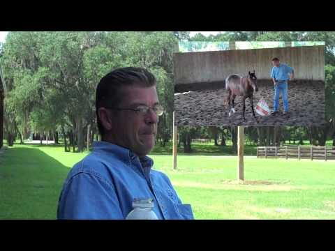 Dave Davis, trainer/clinician taking Ocala by Storm
