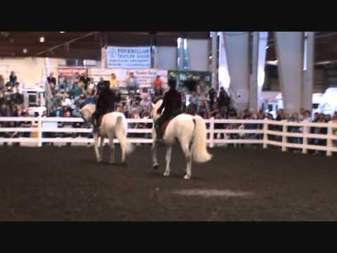 LIPIZZANS at Equine Affaire MA 2010