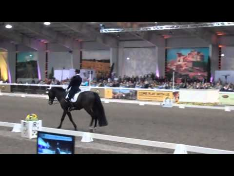 Steffen Peters and Ravel 2011 World Dressage Masters Palm Beach Win Freestyle