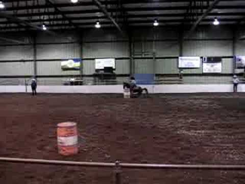 Barrel Racing Standardbred!