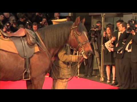"""Joey/Sultan """"War Horse"""" Meets Paparazzi at Theater"""