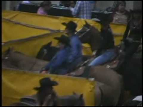 Bikini Barrel Racing (and Guys can Participate)