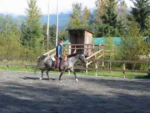 Skipping rope while horseback riding, bridleless