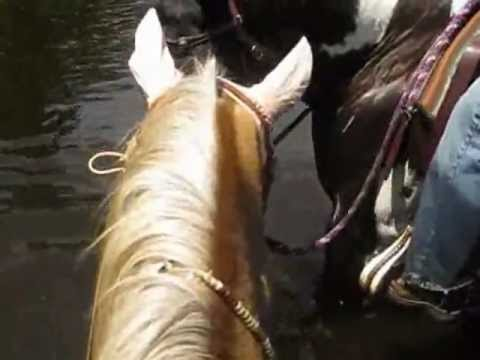 When the Trails are Flooded, the Trailriders Hit the Trails!