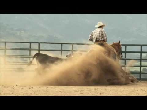 An Amazing Bridleless Western Sliding Stop