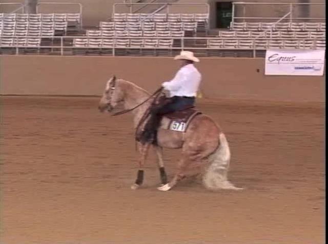 William Shatner Demonstrates His Western Reining Skills