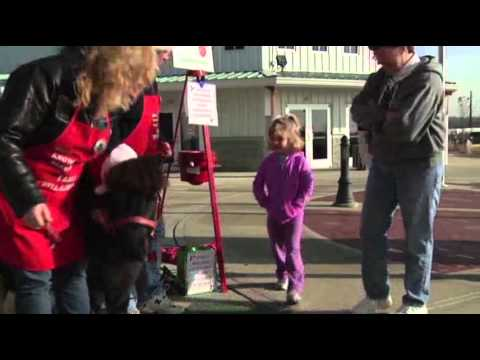 Tinker the Mini Rings Holiday Bell for Salvation Army!
