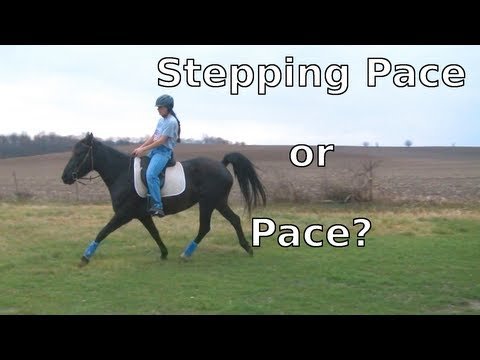 Difference Between a Pace and a Stepping Pace