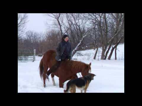 Training the Riding Bow and Riding Lay Down