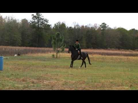 Kelly Sigler Jumping in the Parelli Jumping Saddle