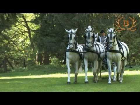 The National Lipizzaner Stud Farm in Hungary