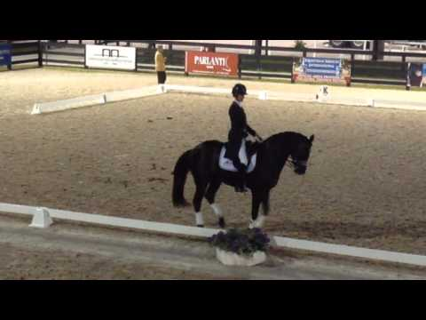 Global Dressage Festival Warm Up Week 10
