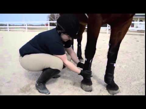 Kristi Reviews the EcoGold Exercise Boot