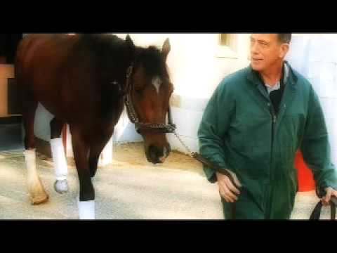 Special on the Great Racehorse Barbaro