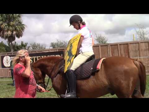Susan Wachowich takes a Jousting Lesson With Noble Cause Productions