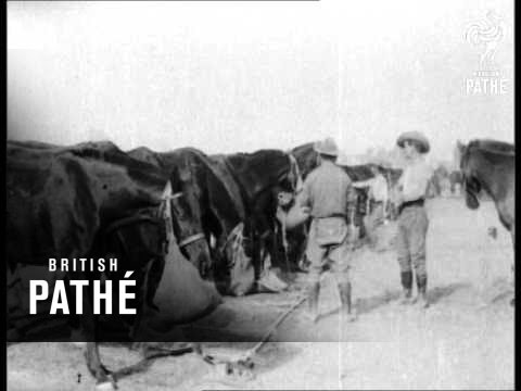 Rare Historical Video of the Australian Light Horse in WWI