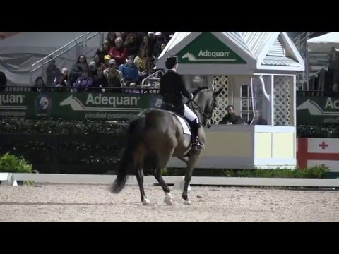 Belinda Trussell's Winning Grand Prix Freestyle