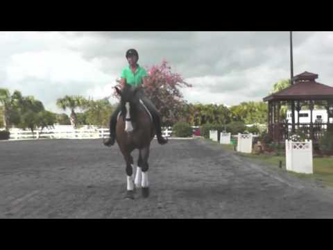 How to Do Travers or Haunches In