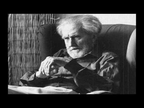 "Ezra Pound ""Flies, blue flies on a fence rail"" Poem animation"