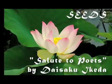 SEEDS - Let Your Artist Bloom